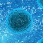 stem cell tissue regeneration