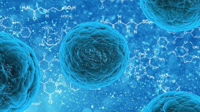 stem cell tissue regeneration